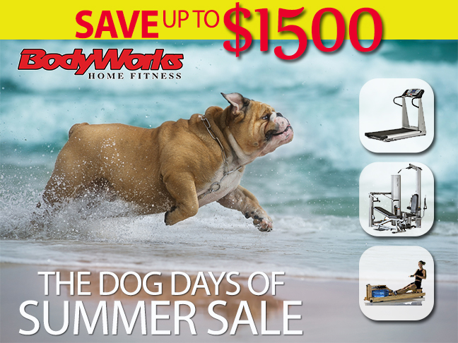 Dog Days of Summer Banner - Click Image to Close